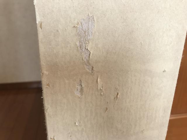 爪とぎで傷つけられた壁2