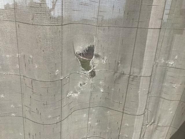 ボロボロのカーテン